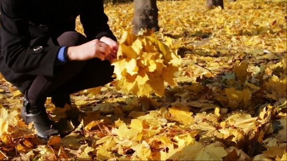 Cover Image for Happy Girl In Autumn Park Throws Yellow Fallen
