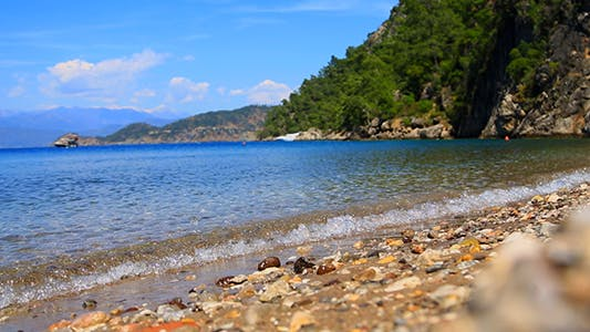 Thumbnail for Tropical Beach