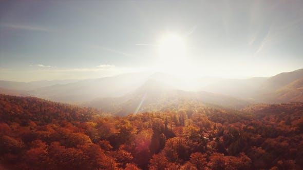 Thumbnail for Surreal Autumn Aerials