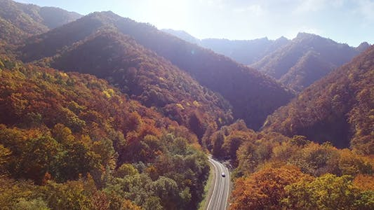 Thumbnail for Aerial View Autumn Forest With Road
