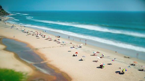 Beach On The Indian Ocean