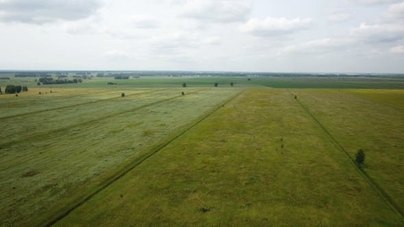 Thumbnail for Aerial Flight Over The Wheat Field Autumn Day