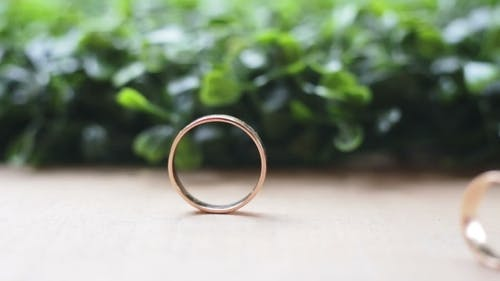 Wedding Rings On a Background Of Grass Movement