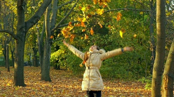Cover Image for Young Girl Having Fun Throwing Yellow Leaves.