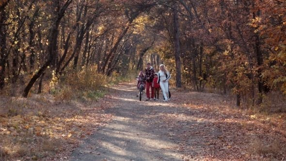 Thumbnail for The Happy Family Walks In Autumn Park