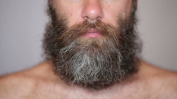 Cover Image for White Man Taking Care Of His Lush Beard And