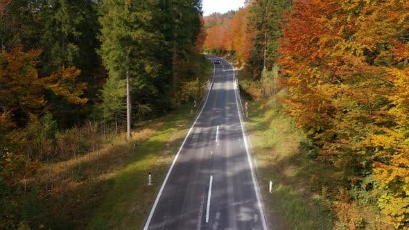 Thumbnail for Flying Over The Empty Autumn Road 5