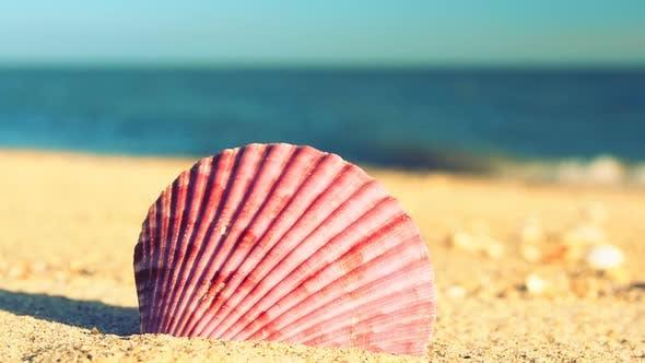 Thumbnail for Beach 2