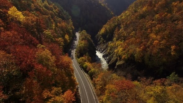Thumbnail for Flying Above Autumn Forest With Mountain Road