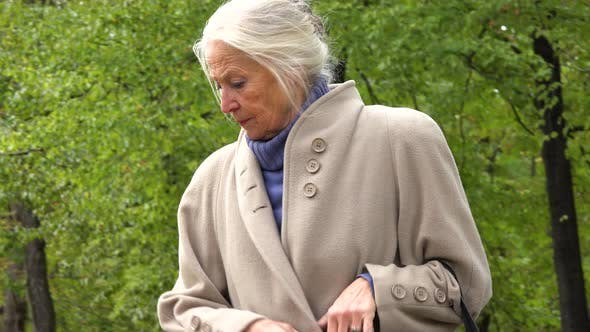 Thumbnail for An Elderly Woman Walks Down a Pathway Through a Park and Sits Down on a Bench