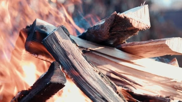 Thumbnail for Barbecue Fire Firewood
