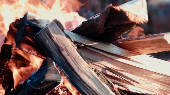 Cover Image for Barbecue Fire Firewood
