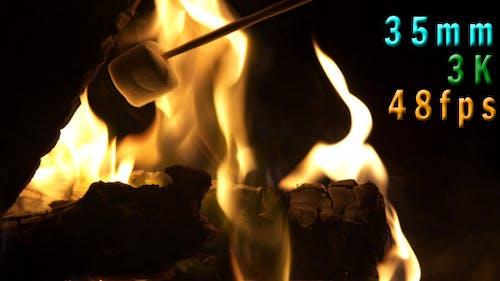 Backyard Fire Pit Marshmallows Roasting 07