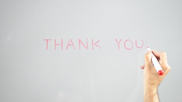 Thumbnail for Thank You