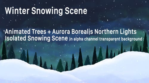 Winter Snow Particles and Aurora Borealis Lights