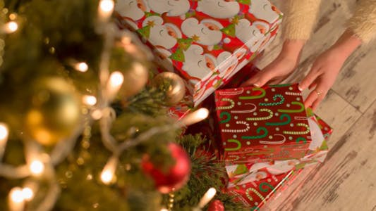 Thumbnail for Girl Puts Presents Under the Christmas Tree