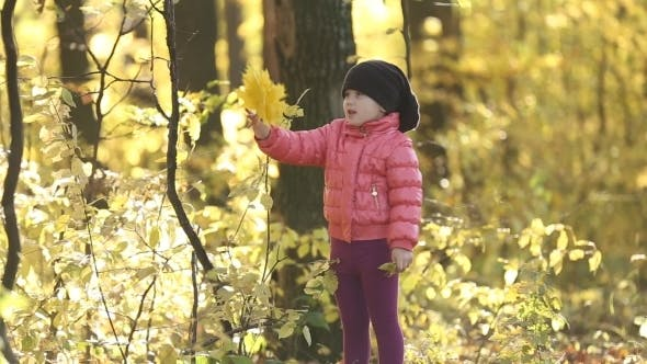 Thumbnail for Child In Autumn Forest