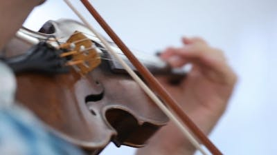 Violinist Man Playing The Violin On a White
