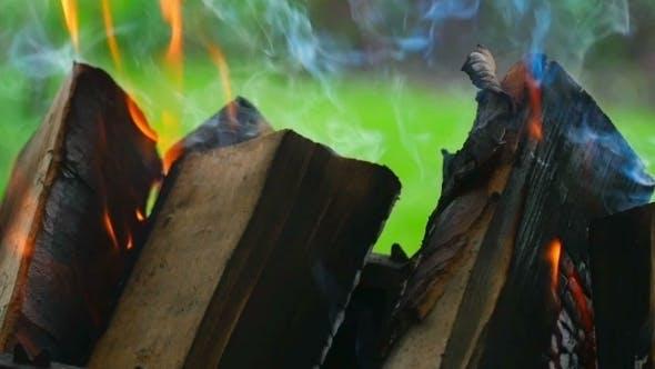 Thumbnail for Wood Burning
