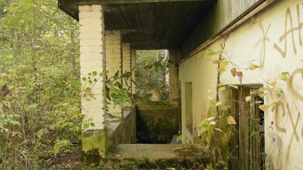 Thumbnail for Along the Wall of the Abandoned Factory