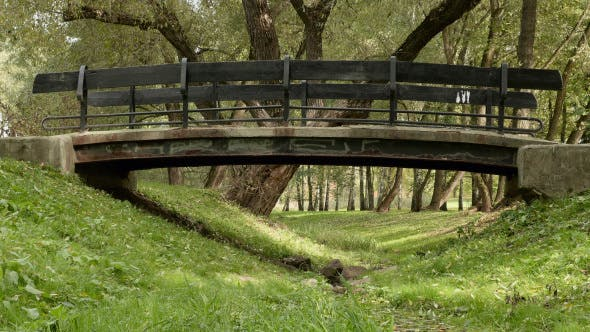 Thumbnail for Small Bridge in the Park