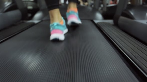 Thumbnail for The Athlete and a Treadmill
