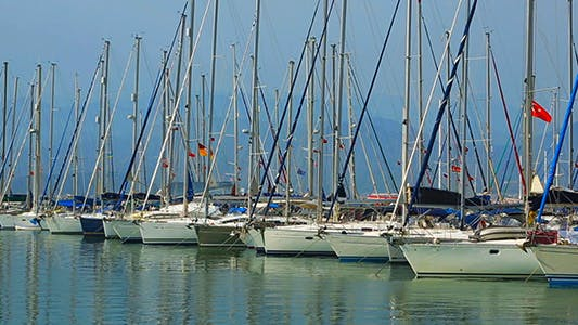 Cover Image for Sea Marina