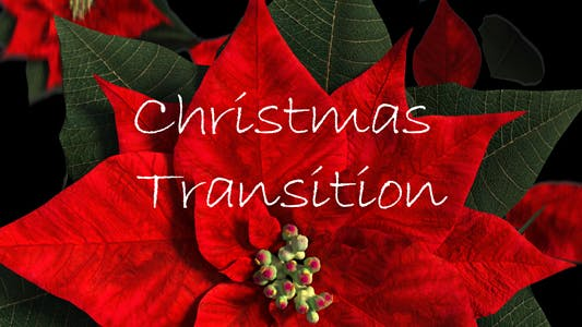 Thumbnail for Christmas Transition