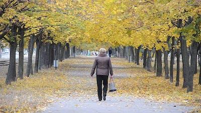 Woman Walking on the Avenue