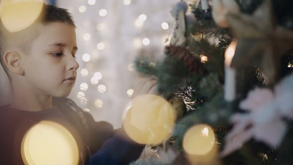 Thumbnail for Young Boy Decorates a Christmas Tree