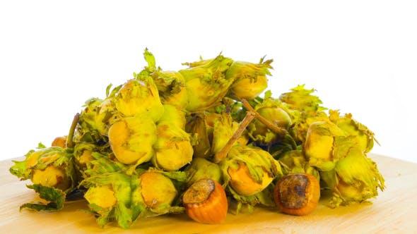 Thumbnail for Fresh Hazelnuts Rotate