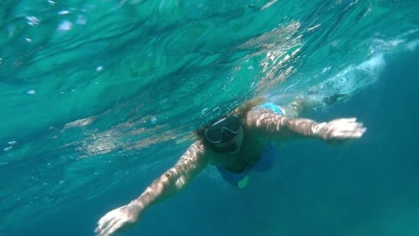 Thumbnail for Woman Swimming With Snorkel In Red Sea