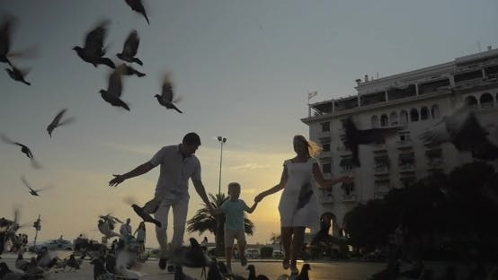 Thumbnail for Family Of Three And Pigeons In The Street