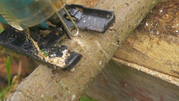Thumbnail for Power Jigsaw Cutting Wood