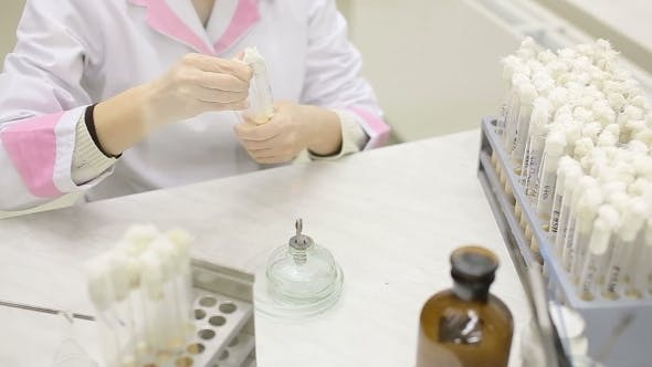 Microbiology Laboratory Work With Test Tubes