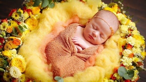 Thumbnail for Cute Little Newborn Baby Girl Sleeping In Flowers