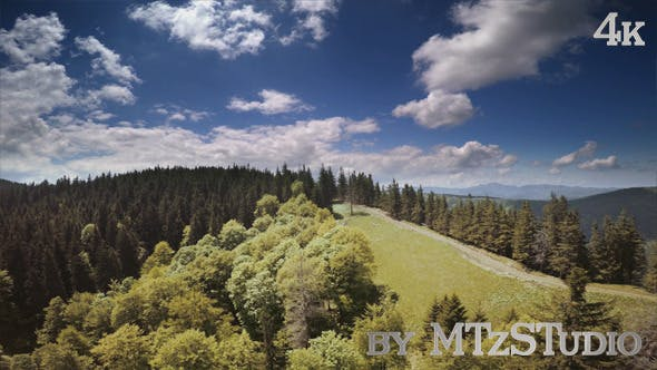 Thumbnail for Aerial Landscapes with Forests