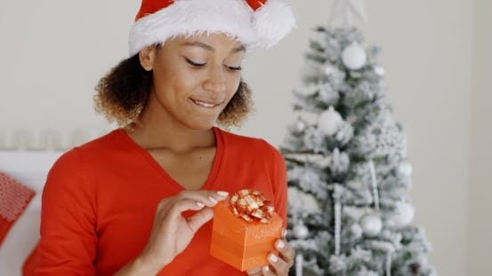 Thumbnail for Lovely Young Woman Holding a Christmas Gift