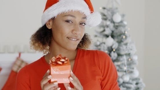 Thumbnail for Smiling Attractive Woman Holding a Christmas Gift