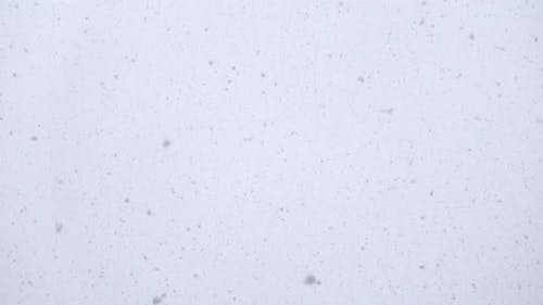 Falling Snow Flakes Flying Real Time