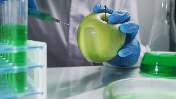 Thumbnail for Scientist Working on Organic Fruits and Vegetables