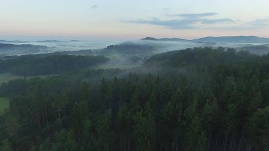 Thumbnail for Aerial Over Forest In Fog On Sunrise 2