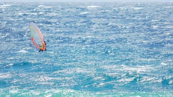 Thumbnail for Athletic Man Enjoying Extreme Windsurfing During Summer Vacation, Active Life