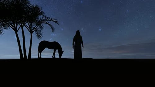 Silhouettes of a Horse and a Bedouin Arab on the Background of a Starry Night in the Desert