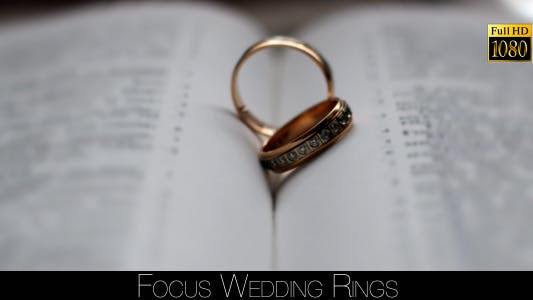 Cover Image for Focus Wedding Rings