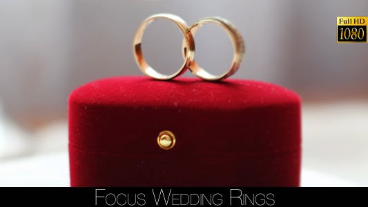 Thumbnail for Focus Wedding Rings 2