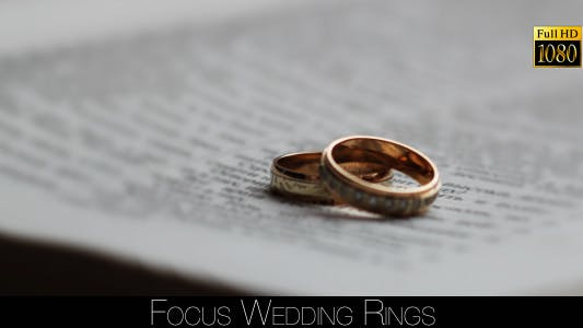 Thumbnail for Focus Wedding Rings 3