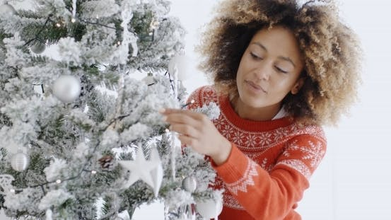 Thumbnail for Attractive Woman Preparing The Tree For Christmas