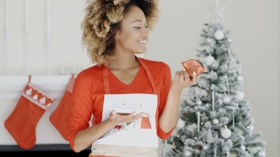 Thumbnail for Pretty Young Woman With a Christmas Cake