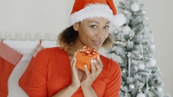 Cover Image for Pretty Woman In Santa Hat Holding a Gift